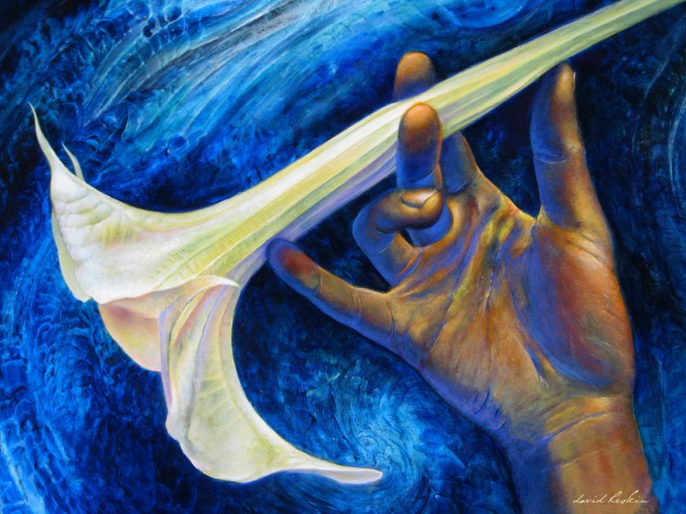 Angels Trumpet